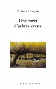 foret_d_arbres_creux